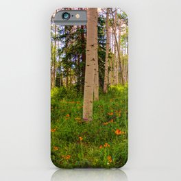 Crested Butte, Kebler Pass in Spring - Panorama by OLena Art for #society5 iPhone Case