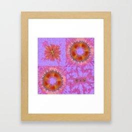 Asymptomatic Relation Flower  ID:16165-082258-08930 Framed Art Print