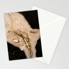 Hidden in the Grain Stationery Cards