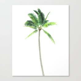 Watercolor palm tree print Canvas Print