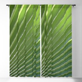 Ruffled Fan Palm Glossy Pleated Fronds Photograph Blackout Curtain