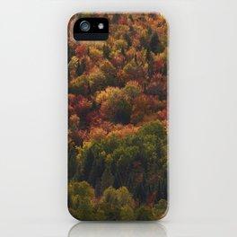 Colours in Saint Élie de Caxton - Mauricie - Canada iPhone Case