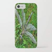 dragonfly iPhone & iPod Cases featuring dragonfly by  Agostino Lo Coco