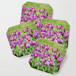 Lilac Tulips Coaster