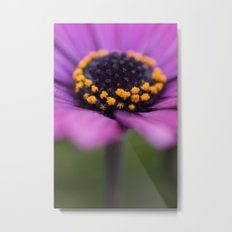 Pink flower, yellow black heart Metal Print