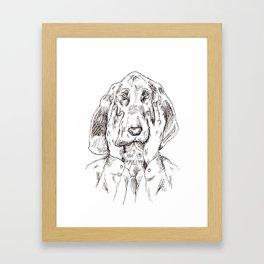 Sad Bloodhound Framed Art Print