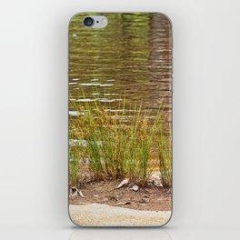 Beautiful River Grass iPhone Skin