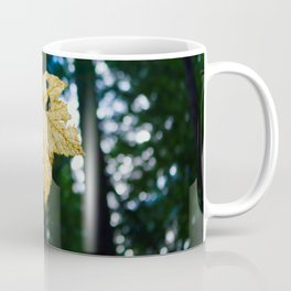 Veiny Leaf in the Humboldt Forest Coffee Mug