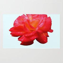 Red Rose (Rosaceae) Rug