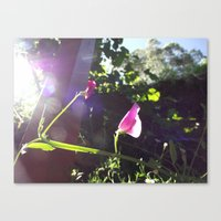 plain Canvas Prints featuring Plain Flower by Georgia Diment