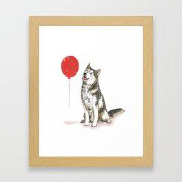 Husky With Balloon Framed Art Print