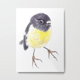 Tomtit bird  Metal Print