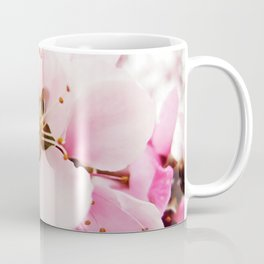 Pink Plum Blossoms Coffee Mug