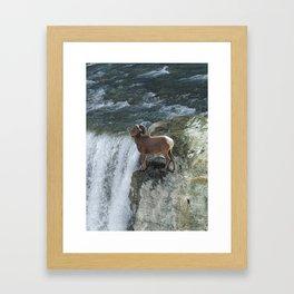 Big Horn Sheep & Rocky Mountain Waterfall Framed Art Print