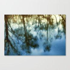 Pond Trees  Canvas Print