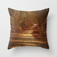 The path to nowhere Throw Pillow