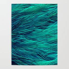Teal Feathers Poster