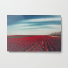 10000001 Tulips Metal Print