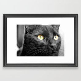 Jet Black Framed Art Print