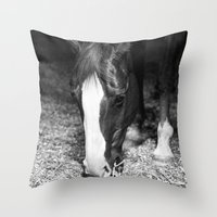 harley Throw Pillows featuring Harley by Yanina May Photography