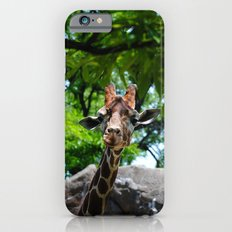 At the Zoo iPhone 6s Slim Case