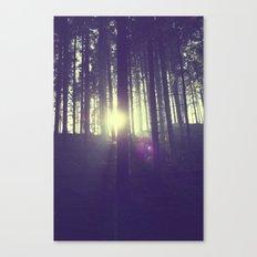 Forrest sun. Canvas Print