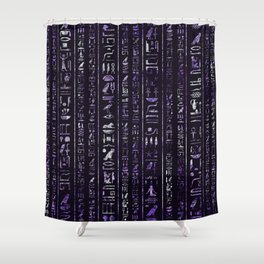 Amethyst and Silver Egyptian hieroglyphics pattern Shower Curtain