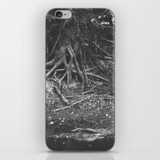 the alligator and the tree  iPhone & iPod Skin