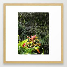 FERN GROTTO Framed Art Print