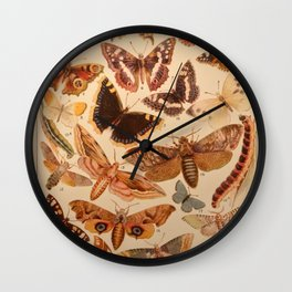 Vintage insects 1 Wall Clock