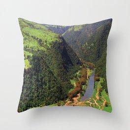 Salalah Oman 4 Throw Pillow