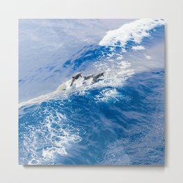 BLUE WAVES AND DOLPHINS Metal Print