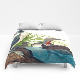 Red-Throated Diver Duck Comforters