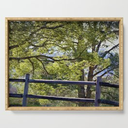 California Forest Landscape by Reay of Light Photography Serving Tray