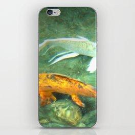Coy Fish iPhone Skin