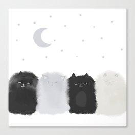 Sleep like Cats Canvas Print