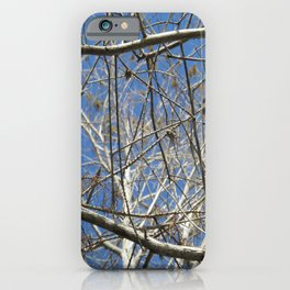 Crisp Cold Florida Morning iPhone Case