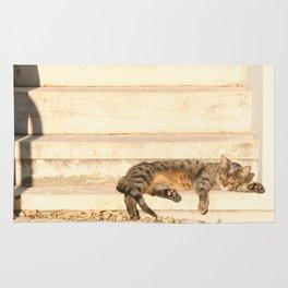 The sun shines on all cats equally Rug