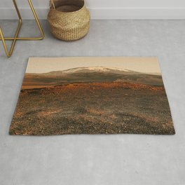 Cold desert in sunset light Rug