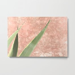 Weathered pink wall and cactus Metal Print