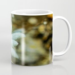 The Heart of Pirin - Leontopodium alpinum Coffee Mug