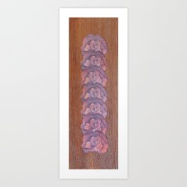 Calico-Sienna Art Print