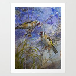 Goldfinches collecting nesting materials Art Print