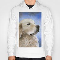 golden retriever Hoodies featuring Dog 98 Golden Retriever by ArtbyLucie