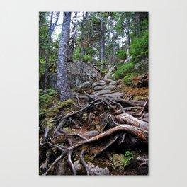 A Treacherous Trail Canvas Print