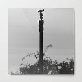 Surveillance Camera Monchrome Metal Print