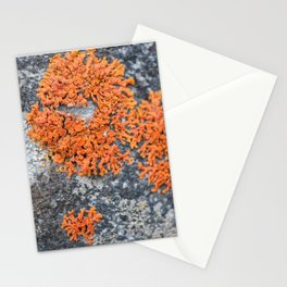 Orange Lichen Stationery Cards
