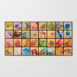 Lollipops 1-32 combined Canvas Print