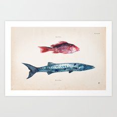 Red Fish Blue Fish Art Print