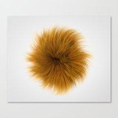 Orange Fuzz Canvas Print